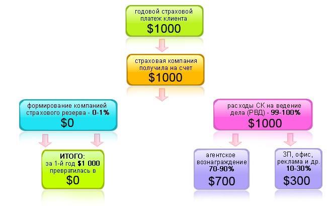 MLM-схема накопительного страхования жизни. 1-й год