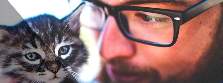 Блокчейн-платформа Rega Risk кроме страхования животных