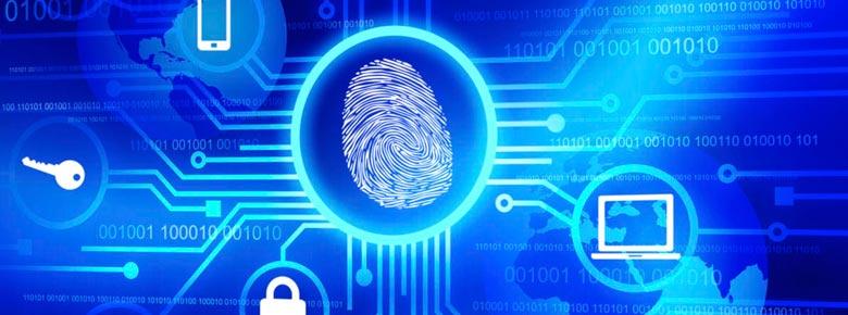 В слабом развитии киберстрахования виноваты сами страховщики и перестраховщики
