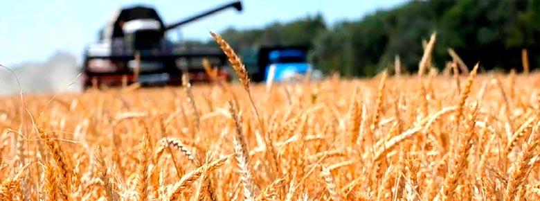 На агрострахование и господдержку украинских аграриев Минэкономики предлагает выделить 2 млрд. грн.
