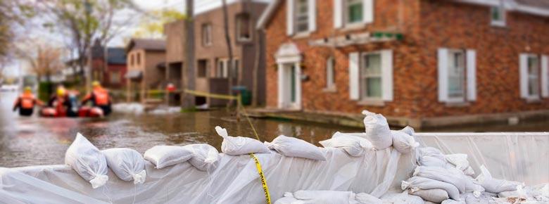 Сезон ураганов 2020 года является самым интенсивным и убыточным для страховщиков