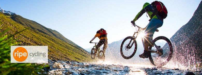 Иншуртех-стартап Ripe и страховщик Aviva запустили продукт страхования велосипедистов Cycleplan