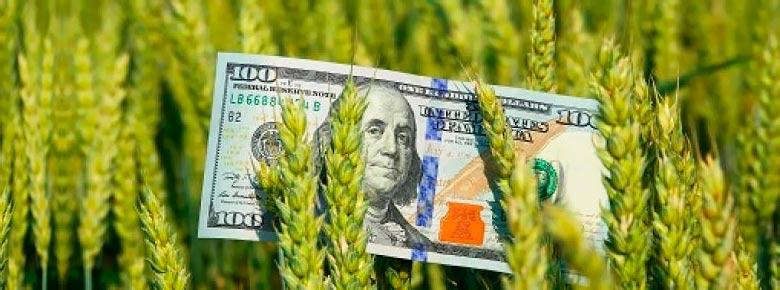 Агростраховщики могут спать спокойно. На территории Украины практически отсутствуют сельхозплощади, которым угрожает засуха