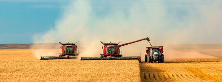 Какие требования установит НБУ к страховщикам сельхозпродукции с господдержкой?